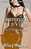 Dominant in a Villa: A BDSM Femdom Story (Undercover...