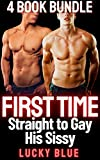 First Time, Straight to Gay, His Sissy: 4 Book Bundle...
